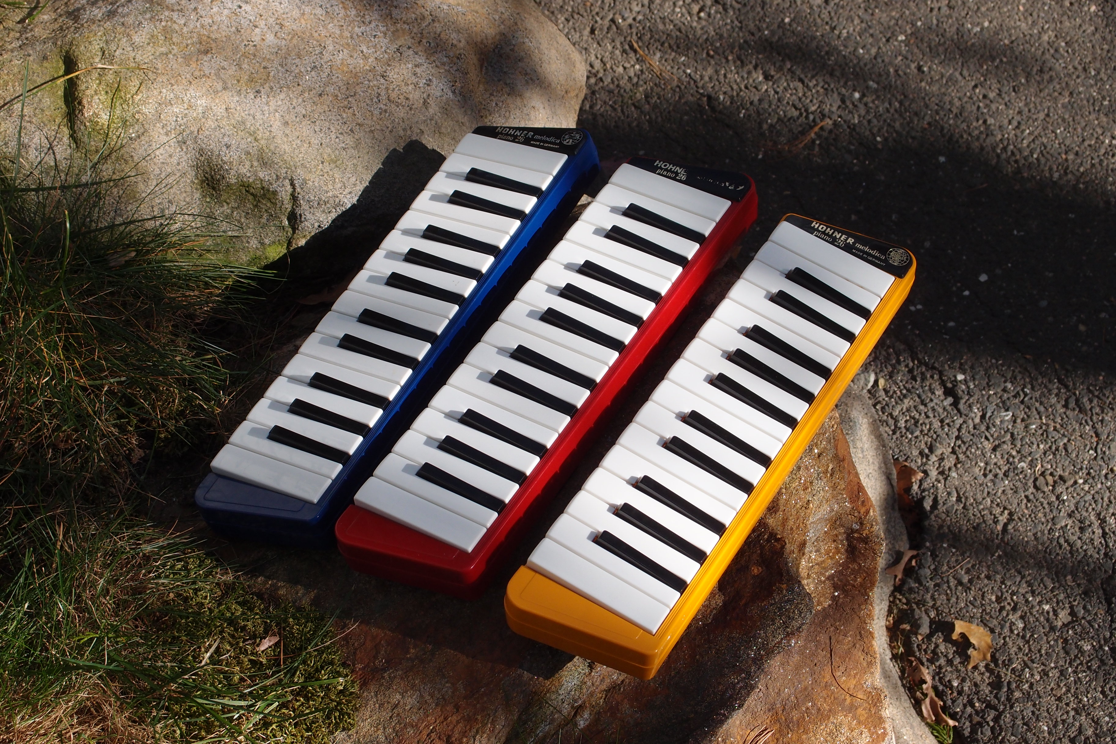 Photo of Melodicas